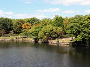 15 Osaka