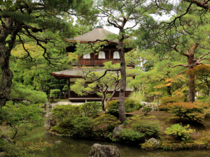 16 Kyoto