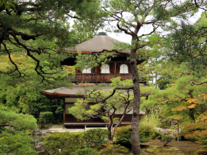 18 Kyoto